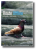 Route Offline Cover Image